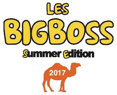 Big Boss 2017
